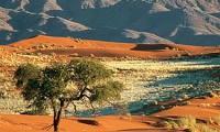Namib Naukluft Mountains