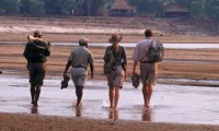 Remote Walking Safaris